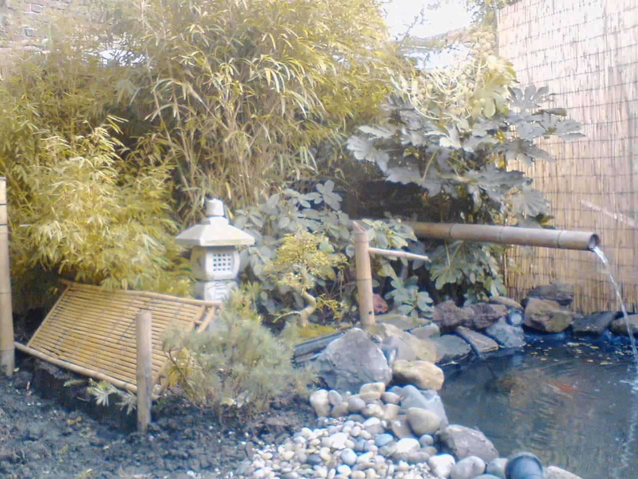2008 novembre archive at mon jardin japonais